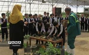 برگزاری کلاسهای آموزش فضای سبز برای دانشآموزان باقرشهر