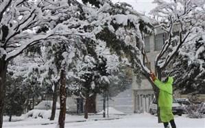 سامانه بارشی جدید از اواخر وقت یکشنبه، وارد استان زنجان می شود