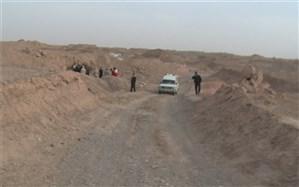 مرگ کودکی درمیبد در پی حمله سگ های ولگرد