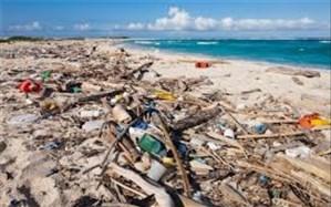 پلاستیک امان از سواحل و دریاها ربوده است
