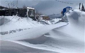 بارش سنگین برف پایانه مرزی حاج عمران عراق را تعطیل کرد