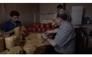 سرنوشت تنها تولید کننده پنیر قرمز ایران در «چه کسی پنیر مرا جابجا کرد؟»