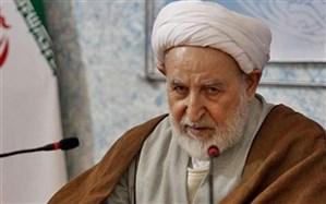 بازخوانی روحیه انقلابی و قاطعیت امام و رهبری از زبان عضو شورای نگهبان