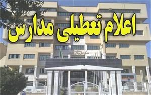 مدارس استان قزوین تا پایان هفته تعطیل شد