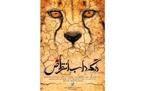 نمایش «در گرداب انقراض» فتحالله امیری در سازمان ملل، به مناسبت روز جهانی حیات وحش