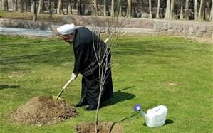 کاشت نهال توسط رئیسجمهوری همزمان با روز درختکاری