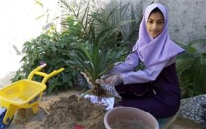 کاشت نهال توسط دانش آموزان به مناسبت روز درختکاری در منزل