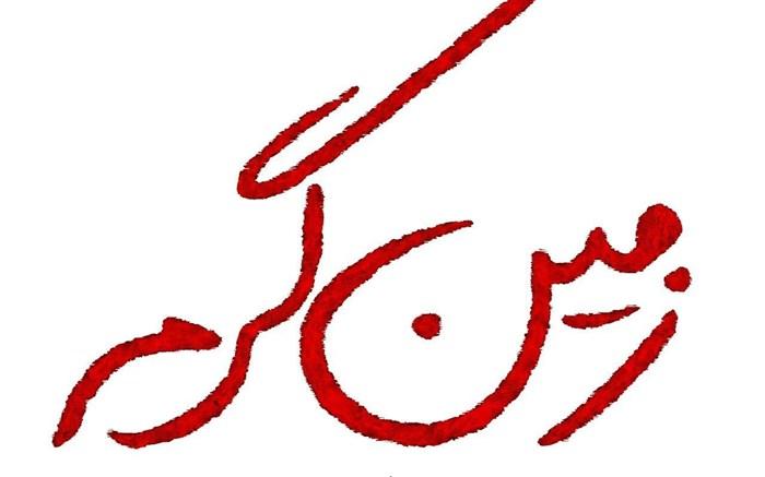 سعید نعمت الله