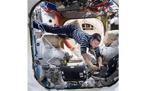 عکس روز ناسا؛ فضانوردانی که در فضا باغبان، عکاس و دانشمند هستند