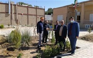 کاشت درخت در فضای سبز اداره میراث فرهنگی کاشمر به یاد مشاهیر شهرستان