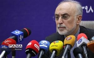 صالحی: مراسم روز ملی فناوری هستهای برگزار نخواهد شد