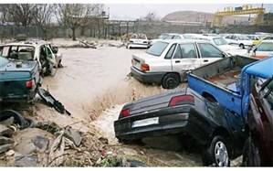 خسارت سیلاب کنگان در حال بررسی است