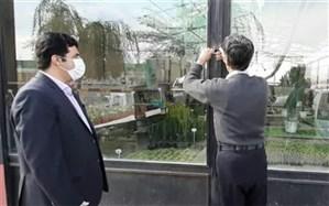 تعطیلی نمایشگاههای گل و گیاه بخش مرکزی پاکدشت