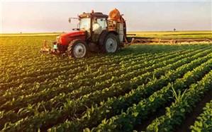 تمدید یک ماهه سررسید تسهیلات صندوق حمایت از توسعه بخش کشاورزی در سیستان وبلوچستان