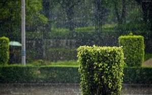 طی دو روز آینده آب و هوای زنجان با بارش باران و رگبار و رعد برق همرا خواهد بود