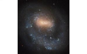 """عکس روز فضایی؛ کهکشان کوتوله در صورت فلکی """"تازیها"""""""