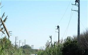 سیمهای برق شهرهای بابلسر، فریدونکنار و امیرکلا به کابل تبدیل میشود