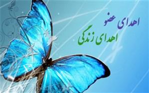 نوجوان دلواری فرشته نجات سه هم وطن شد
