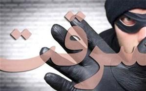 کاهش ۲۹ درصدی سرقت در بوشهر