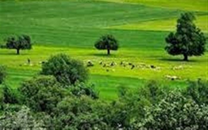 قدردانی استاندار از همراهی خردمندانه مردم گیلان در روز طبیعت