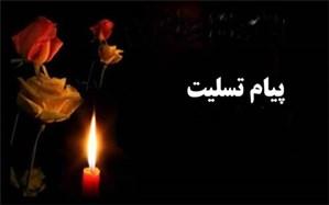 پیام تسلیت سازمان دانشآموزی در پی درگذشت پدر شهید دانشآموز «مهرداد عزیزالهی»
