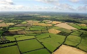 پیش بینی سنددار شدن ۲ میلیون هکتار از اراضی کشاورزی تا پایان سال