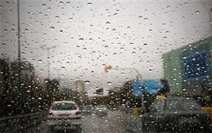 فعالیت سامانه بارشی در بوشهر تا هفته آینده تداوم دارد