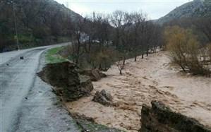 بارش های اخیر  ۱۰۰ میلیارد تومان به استان کهگیلویه و بویراحمد خسارت  وارد کرد