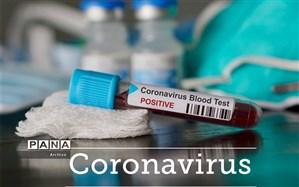 شناسایی ۶۵۸مورد جدید مبتلا به کرونا ویروس  در خوزستان