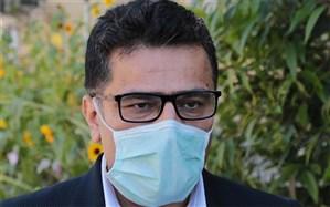 عدم تغییر آمار مبتلایان به کرونا در استان بوشهر نتیجه همراهی مردم با مدافعان سلامت در هفتههای گذشته است