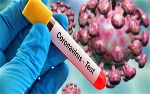 رئیس دانشگاه علوم پزشکی زاهدان: شمار مبتلایان بیماری کرونا به ۴۳۸ نفر رسید