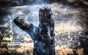 هشدار محیط زیست: آتش سوزی در کمین جنگلها و مراتع مازندران