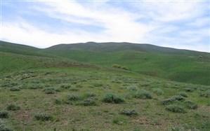 احیاء 400 هکتار از عرصه های منابع طبیعی شهرستان خرامه از محل اعتبارات صندوق توسعه ملی