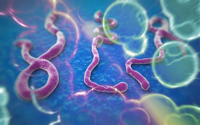 واکسن جهانی ابولا ساخته شد