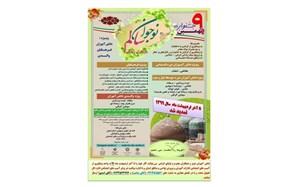 تمدید مهلت ارسال آثار به نهمین جشنواره نوجوان سالم (یاریگران زندگی) تا 31 اردیبهشت ماه 1399