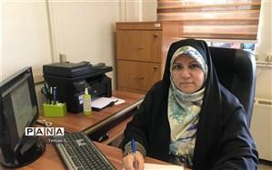 عربشاهی: ساماندهی نیروی انسانی، راهی برای رسیدن به اهداف سند تحول است