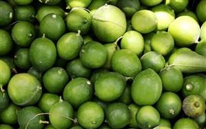 صادرات لیموشیرین، لیموترش و کش قیطانی تولید ماسک ممنوع شد