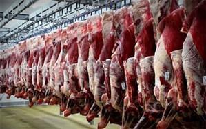 تولید گوشت قرمز در شهریورماه ۷.۸ درصد افزایش یافت