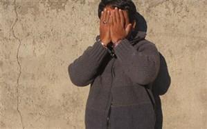 دستگیری عامل دستبرد به باغ ویلا ها و کشف 7 فقره سرقت  در چناران