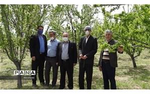 خیر فرهنگی شیروانی یک قطعه باغ سر درختی به آموزش و پرورش شیروان اهدا کرد