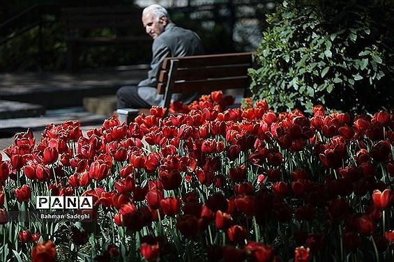 باغ ایرانی، بهشتی برای پایتخت نشینان