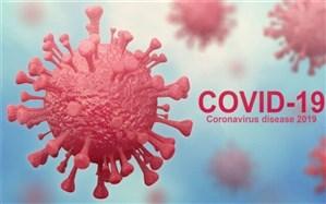 آثار مصرف داروهای ضد ایدز و واکسن «بثژ» در کاهش احتمال ابتلا به کرونا