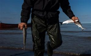 مجروح شدن محیط بان شهرستان لالی در حین برخورد با صیادان غیر مجاز ماهی