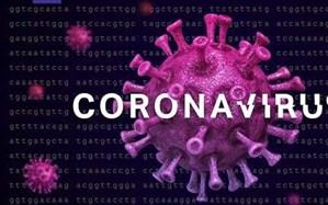 شناسایی ۷۴ مورد جدید ابتلا به کروناویروس در استان فارس و افزایش مبتلایان به ۴۳۰۷ نفر