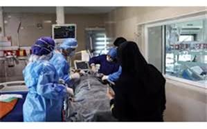 تاسیسات گردشگری فارس آماده ارائه تخفیف ۵۰درصدی به کادر درمانی کشور