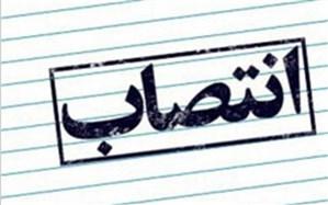 فرمانداران ۶ شهرستان تازه تاسیس فارس منصوب شدند