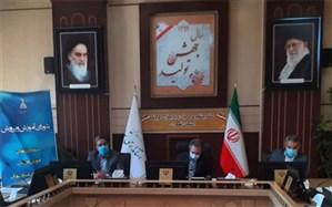 مدارس غیر دولتی شهرستانهای استان تهران از پیشگامان آموزش مجازی در دوران کرونا هستند
