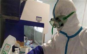 همه شهروندان خارجی مبتلا به کرونا مقیم ایران رایگان درمان می شوند
