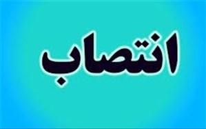 مشاور استاندار بوشهر در پیگیری امور آب منصوب شد