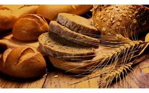 ارتقای امنیت غذایی، محور اصلی تحقیقات کشاورزی